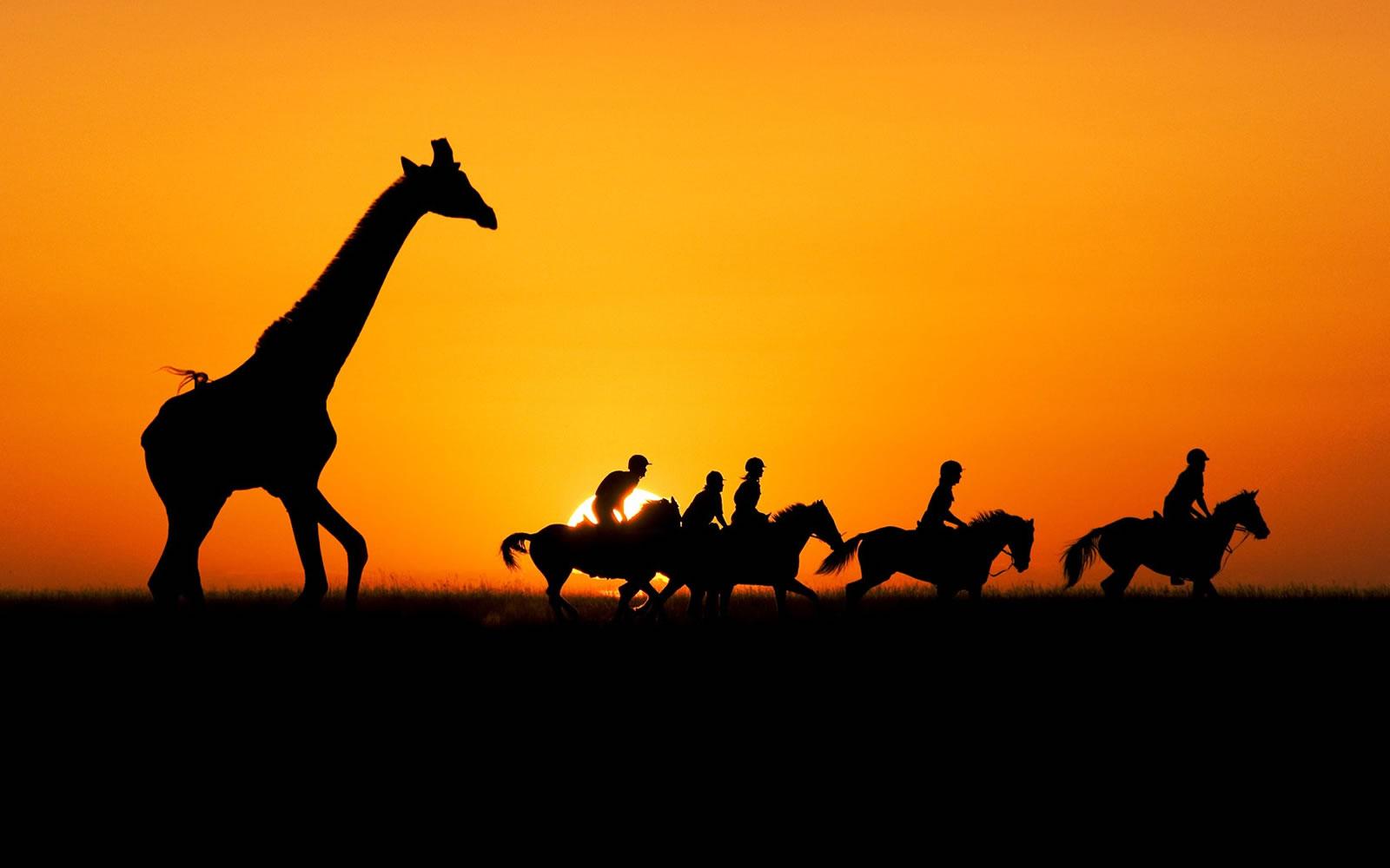 Kenya_Safari_package